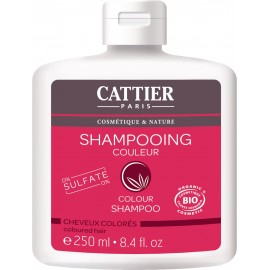 CHAMPU COLOR CABELLO TEÑIDO 250 ml